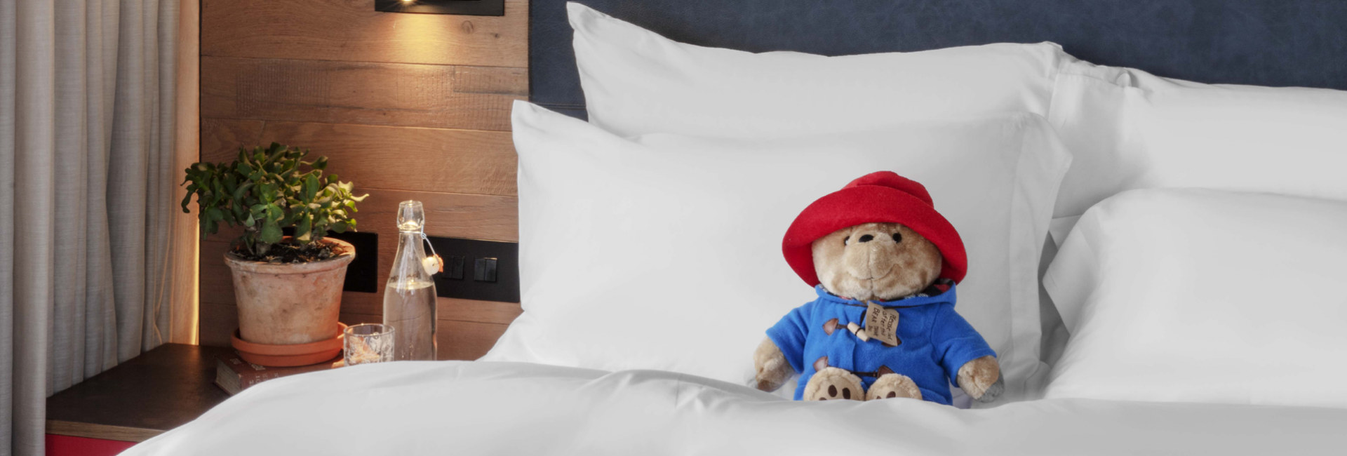 Paddington bear on hotel bed